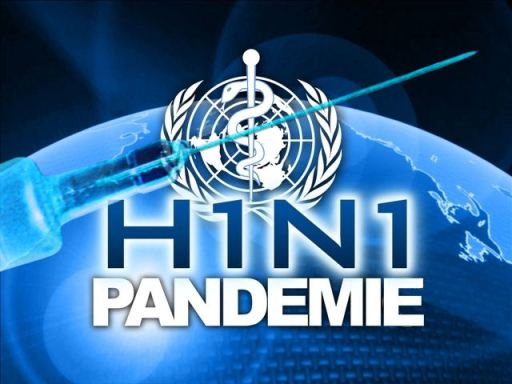 De WHO liet als officiële organisatie een officieël H1N1-logo ontwerpen..! Krankzinnigheid ten top..? Alsof het een bedrijf was..! En wie weet was het dat ook wel voor de lachende 3e in het spel: Big Pharma.