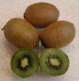 De Kiwi is een vrucht uit Nieuw Zeeland. Tegenwoordig is deze vitamine-C-bom gewoon een ingeburgerde Nederlander..