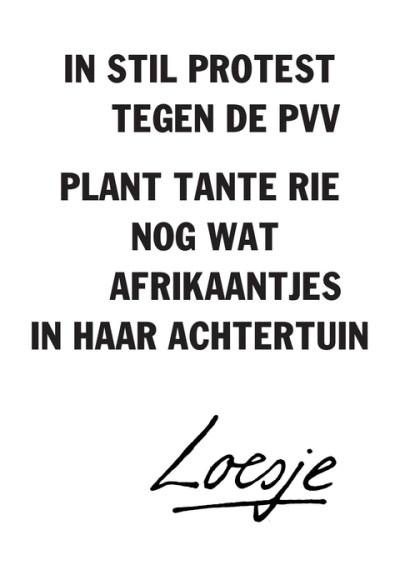 loesje pvv afrikaantjes