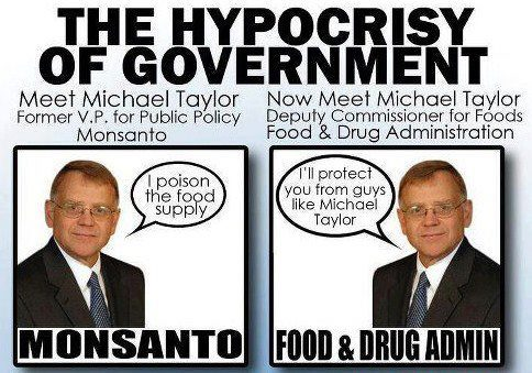 michael taylor government Monsanto