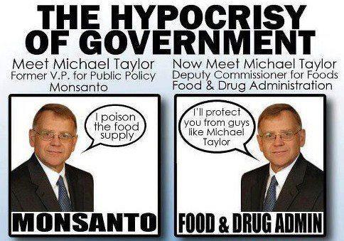 michael taylor government Monsanto