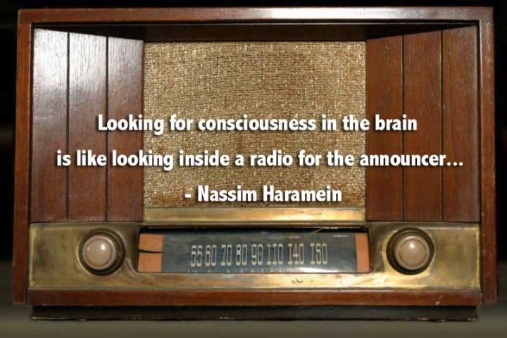 nasim haramein radio announcer