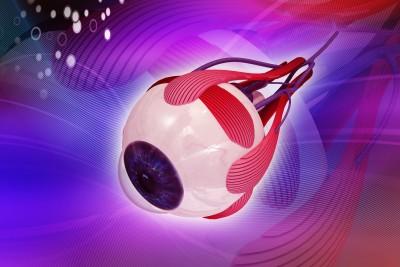 De oogspieren die de oogbollen doen draaien, maar ook bollen en vlakken
