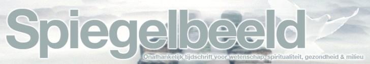 spiegelbeeld logo