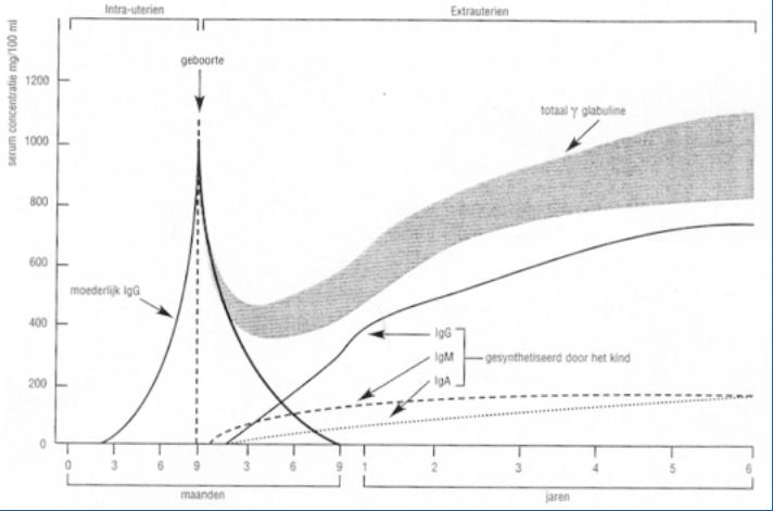 vaccinaties-verstoren-immuunsysteem