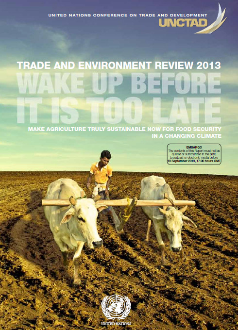 wake up before it is too late UNCTAD