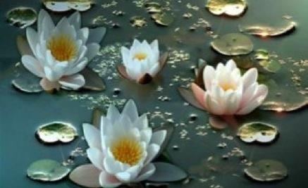 Het is is het proces van het jezelf openstellen voor het hoogste motief in alle mensen en in al het leven en de ondersteuning bieden aan deze stroom van de diepste intentie naar de ultieme uiting ervan.