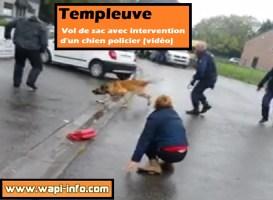 Templeuve : vol de sac avec intervention d'un chien policier (vidéo)