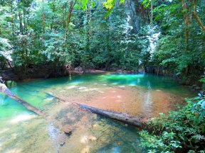 Lagoon, Gunung Mulu National Park, Malaysia