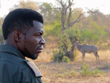 Game Drives Kruger National Park