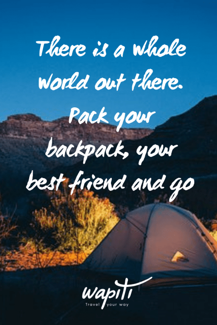 56 Travel Together Quotes For Friends And Loved Ones Wapiti Travel