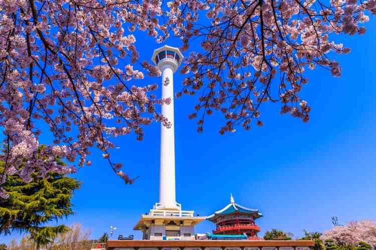 Busan Tower, South Korea