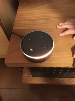 Amazon Echo Dotを購入。AIは習うと慣れるの両面から。