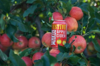 Festive Apple Cider