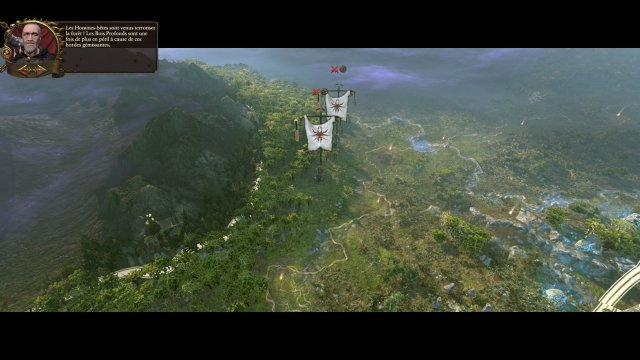 total-war-warhamme-realm-wood-elves-test-07