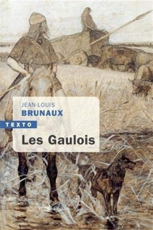 Les Gaulois - Jean-Louis Brunaux - Tallandier