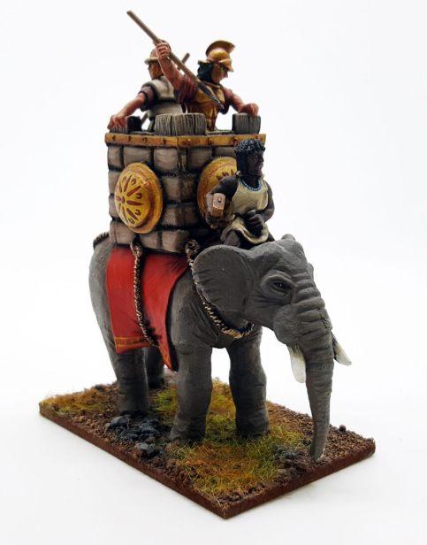 Carthaginian African Forest Elephant