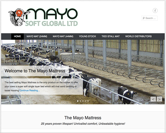 Mayo Soft Global