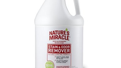 Best Nature's Miracle Stain Reviews