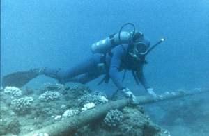 Saluran Kabel Bawah Laut