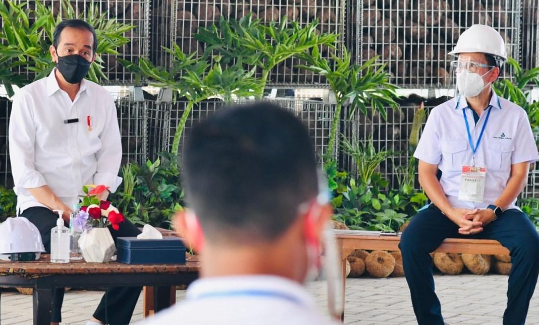 Pesan Presiden ke Petani Porang, Harus Bisa Mengolah Pascapanen