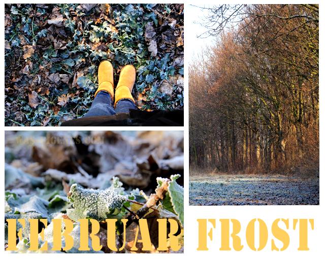 Februar Frost   waseigenes.com