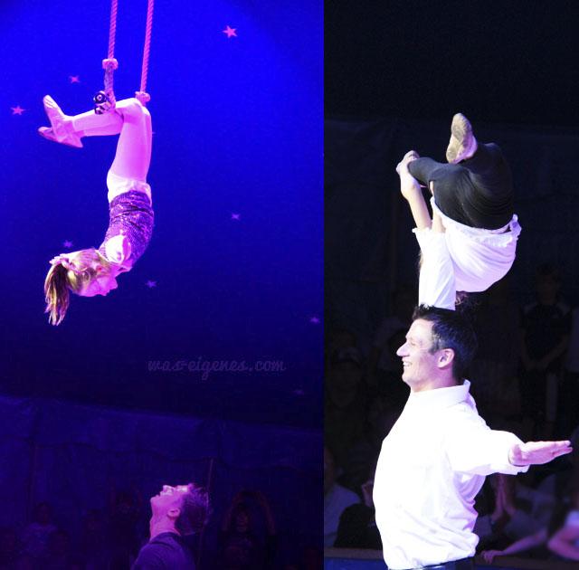 circus_jonny_casselli7