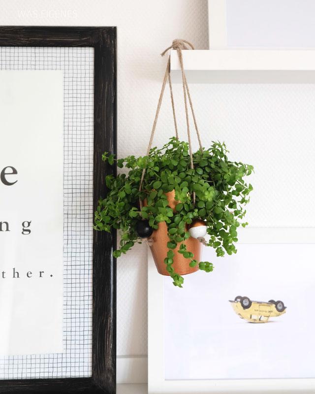 DIY hängende Pflanzen Deko   waseigenes.com