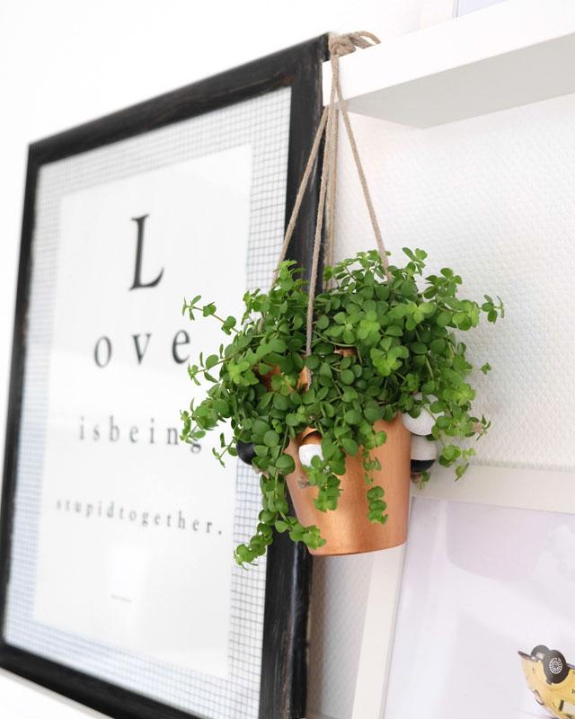 DIY hängende Pflanzen Deko | waseigenes.com