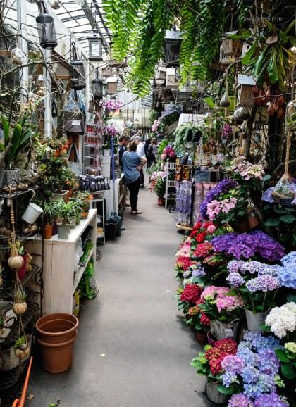 Paris Blumenmarkt | waseigenes.com
