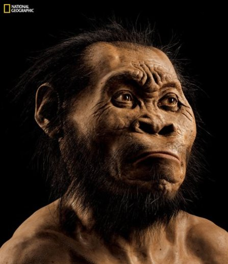 """This March 2015 photo provided by National Geographic from their October 2015 issue shows a reconstruction of Homo naledi's face by paleoartist John Gurche at his studio in Trumansburg, N.Y. In an announcement made Thursday, Sept. 10, 2015, scientists say fossils found deep in a South African cave revealed the new member of the human family tree. (Mark Thiessen/National Geographic via AP) IMAGE MUST INCLUDE NATIONAL GEOGRAPHIC LOGO; CROPPING NOT PERMITTED; MANDATORY CREDIT: """"MARK THIESSEN/NATIONAL GEOGRAPHIC"""""""