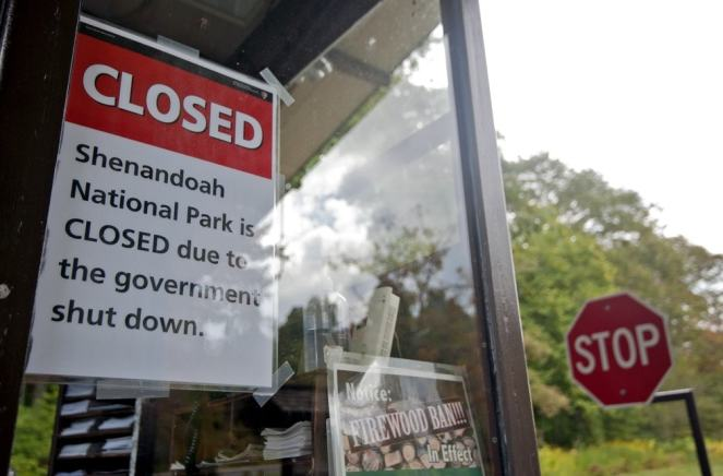These trees are also closed, thanks to this magical window. The real issue here is that the firewood ban was likely cancelled during this time