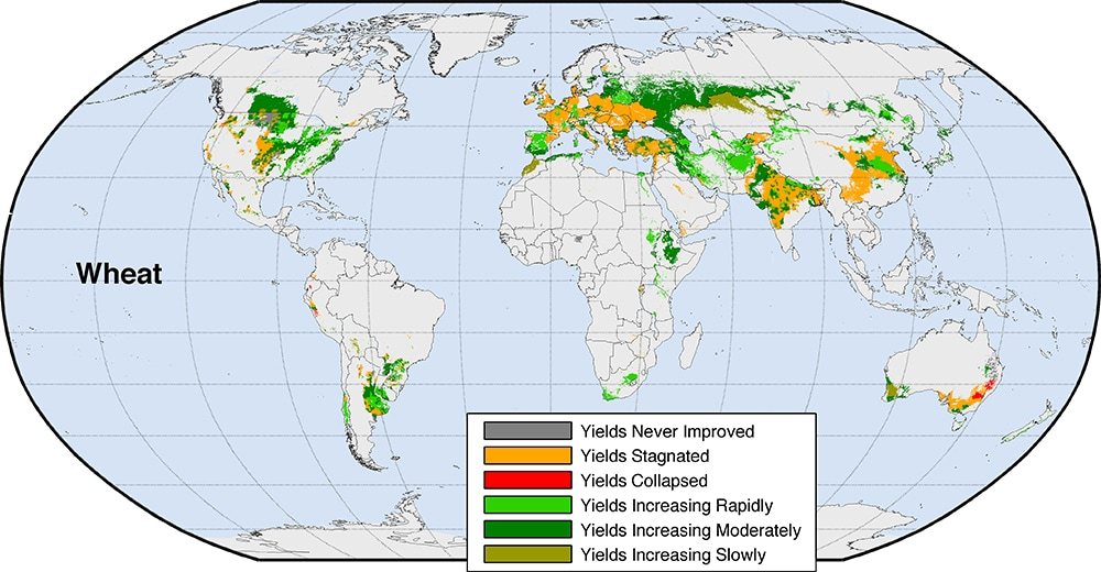 One of four maps showing projected changes in major crop yields. (University of Michigan)