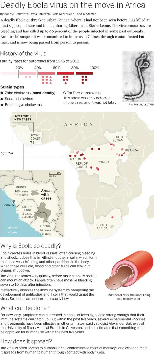 Pandemic   Exposing the Big Game