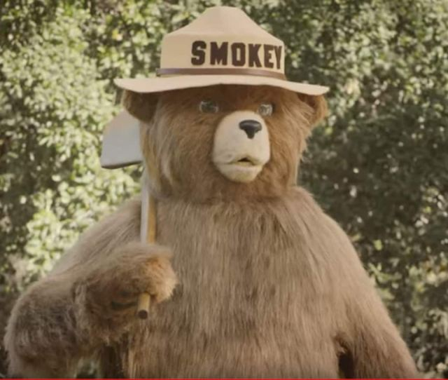 Was Smokey Bear Wrong How A Beloved Character May Have Helped Fuel Catastrophic Fires The Washington Post