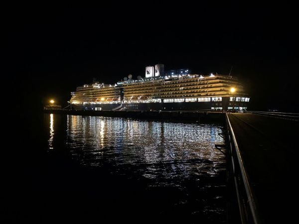 44 Americans on cruise ship docked in Japan tested positive for coronavirus, U.S. health official says