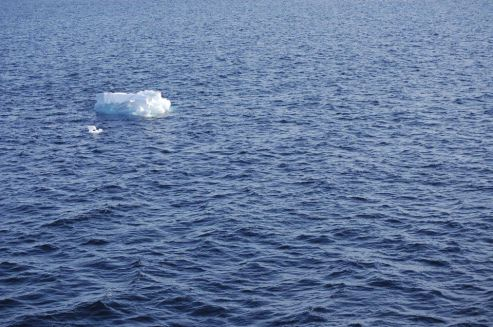 Ice Floe in Arctic Sea