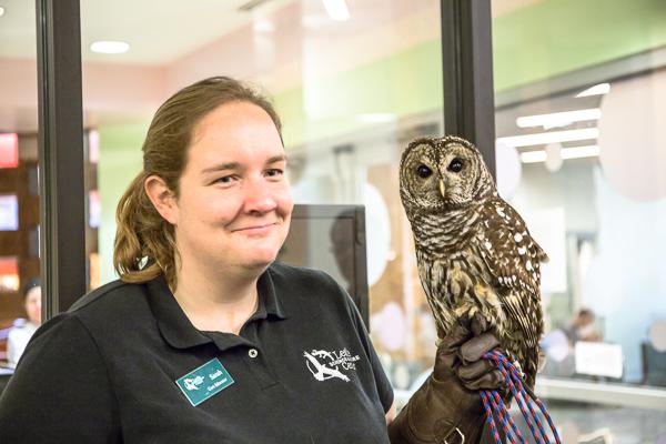 Sarah Gilmore shows a Barred Owl