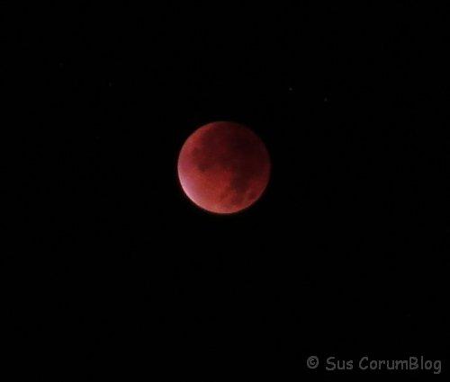 Mondfinsternis2015.jpg