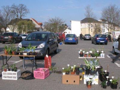 PflanzenflohmarktWehen_April2012.jpg
