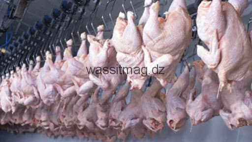 تـــــــبســــة سعر الدجاج ب450 دج في معظم البلديات