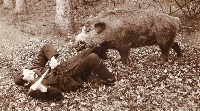 Maarten Pauw van Wieldrecht zich met dolk verwerend tegen aanvallend (opgezet) wild zwijn, Henry Pauw van Wieldrecht, 1898 - Rijksmuseum