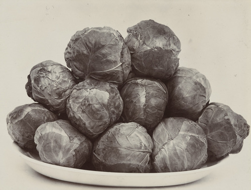 Prachtige groenten van Charles Jones