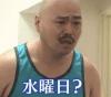 【悲報】水曜日のダウンタウン、モニタリング化する