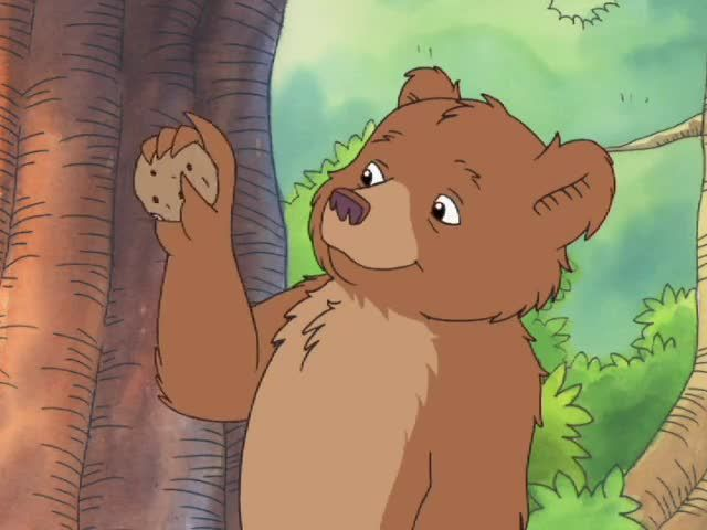 Watch Little Bear Season 5 Episode 10 Little Bears Favorite Tree Something Old Something New