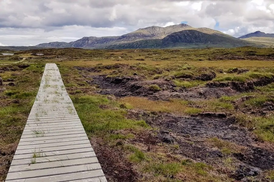 Day 3 A board walk on the moor of South Uist - Hebridean Way in 12 days