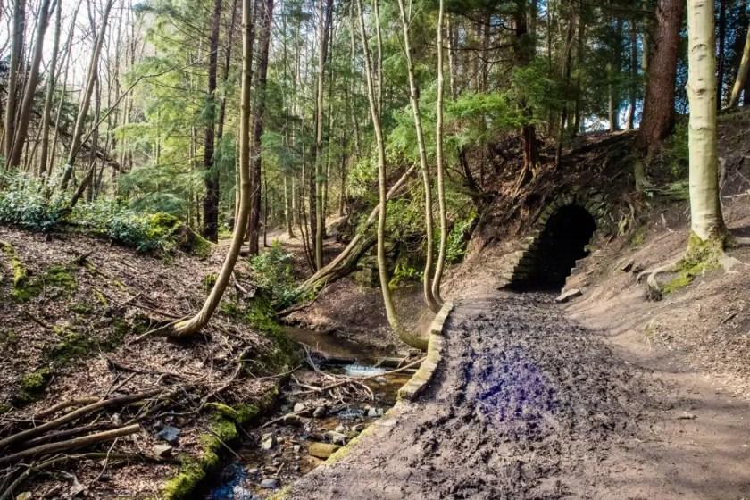 The stone-built bridge on the trail of Maspie Den in Scotland
