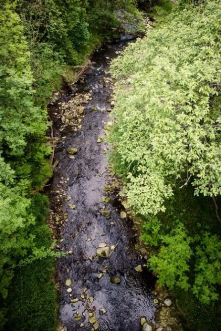 Looking down onto a small river from a suspension bridge.