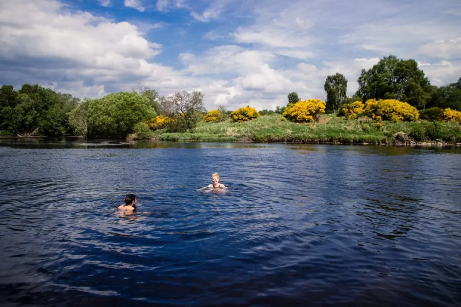 Swimming in the river Spey.