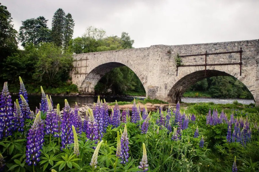 The old Spey bridge by Grantown on Spey.